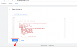 Google Tag Manager Practical Guide:Container Export And Import